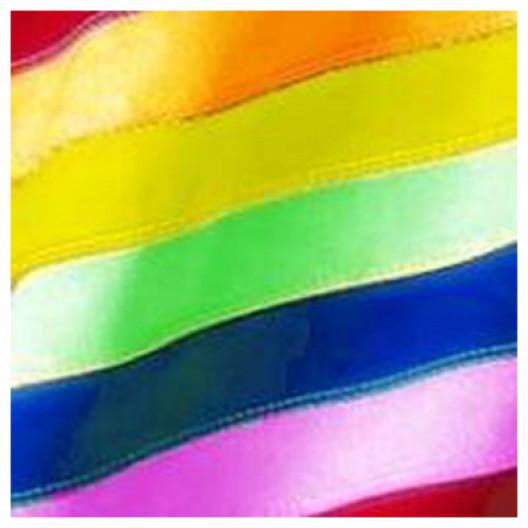 Chattahoochee Valley Pride, Inc.